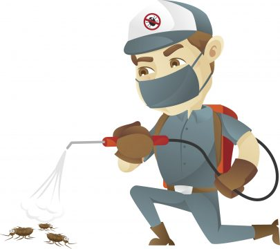 Reliable Pest Control Tampa, FL 33601